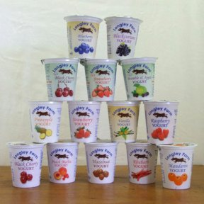 Longley Farm Fruit Yoghurt